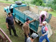 Dan the truck man, Chivu, Nelu and the builders unloading bricks; the Aro dug deep ruts in the muddy grass before it got away