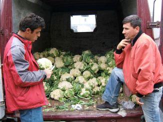 Good, cheap, seasonal vegetables, lacking only presentation skills