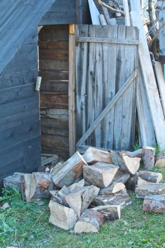 The yawningly empty woodshed now has a growing heap of logs to fill it for the winter