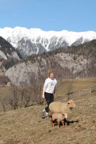 Suzie herds Obraznica and her new lamb back to the Banus' meadow in March
