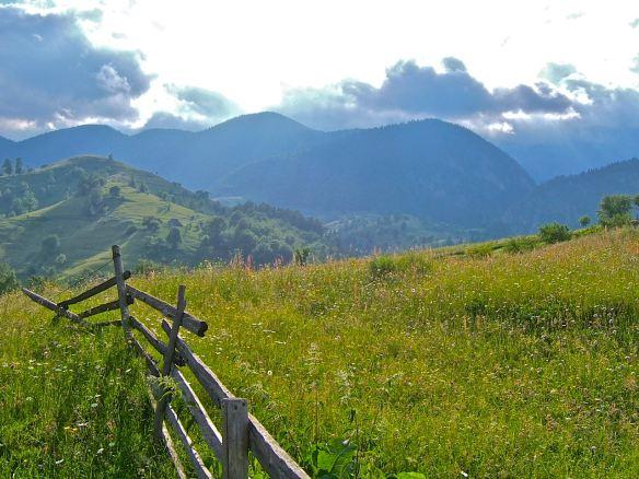 Piatra Craiului, Magura, Transilvania, loneliness, mountains