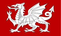celtic_flag_of_england