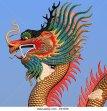 closeup-of-the-golden-chinese-dragon-e81e56