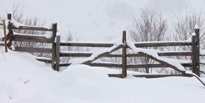 Gate blocked - will take some digging